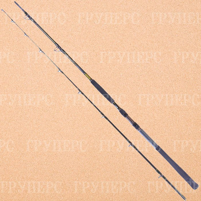 Удилище Daiwa Exceler Catfish 3.00m 200-600g 11818-305RU